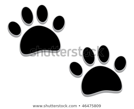 Tridimensional paw prints stock photo © gant