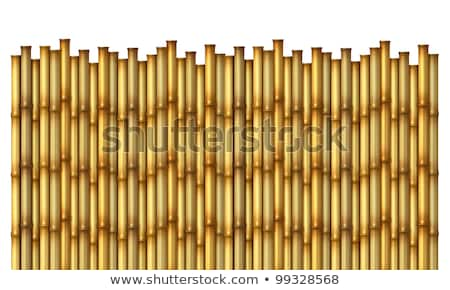 fence made of bamboo stock photo © arrxxx