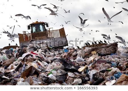 ブルドーザー · ごみ · トラック · 作業 · サイト - ストックフォト © Rob300