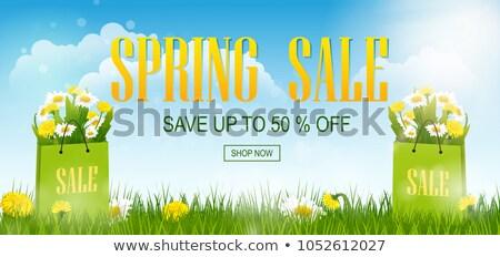 Spring Sale shopping bag with dandelion, vector illustration Stock photo © carodi