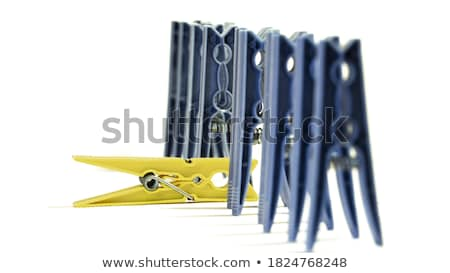 plastic clothes pegs Stock photo © ivonnewierink