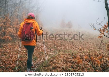 турист лес женщины ходьбе тропе лесу Сток-фото © Antonio-S