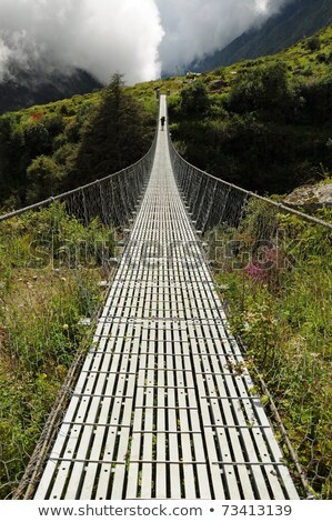 Puente colgante pie camino río Nueva Zelandia Foto stock © wildnerdpix