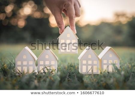 talál · tökéletes · ház · egyszerű · stilizált · külvárosi - stock fotó © lightsource