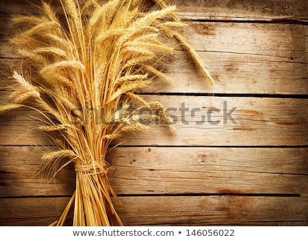 bread over wooden table with wheat spikes stock photo © lunamarina