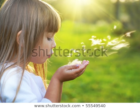 Stock photo: Blond kid girl blowing dandelion flower in green meadow