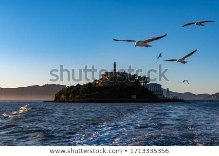 刑務所 · サンフランシスコ · 水 · 市 · 日没 · 海 - ストックフォト © lunamarina