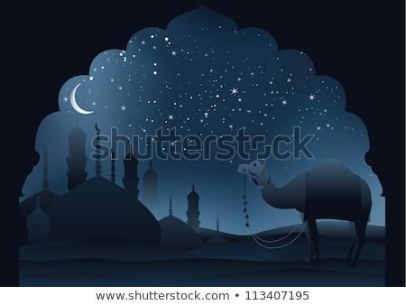 Arched Doorway To Night Sky Stok fotoğraf © BibiDesign