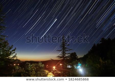 Startail  Stock photo © lukchai