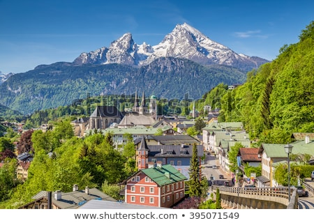 Forest in Berchtesgadener Land, Germany Stock photo © fisfra
