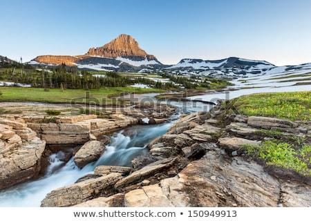 Montana · glaciar · parque · EUA · montana - foto stock © benkrut