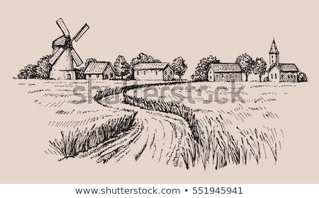 Old rural landscape stock photo © olandsfokus