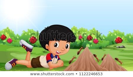 Mieren tuin Rood klimmen planten macro Stockfoto © Anterovium
