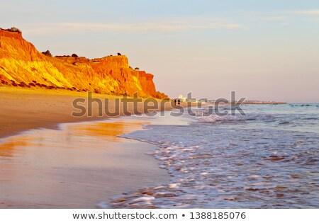 人 ビーチ ポルトガル 徒歩 空 ストックフォト © compuinfoto