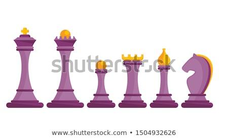 шахматам соперник Команды белый команда черный Сток-фото © wavebreak_media