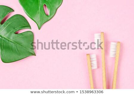 Szennyezés üzenet levelek zöld levelek természet zöld Stock fotó © fuzzbones0