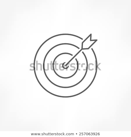 Arrow hit the traget thin line icon Stock photo © RAStudio