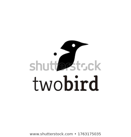 Two birds illustration Stock photo © Zela