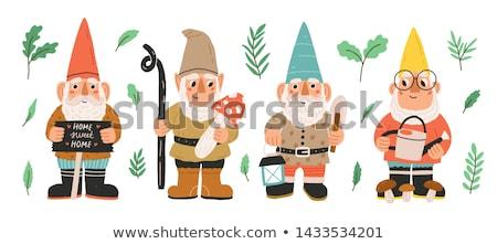 庭園 ノーム 木材 森林 帽子 漫画 ストックフォト © adrenalina