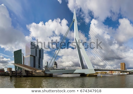 erasmus bridge in rotterdam the netherlands europe stock photo © hofmeester