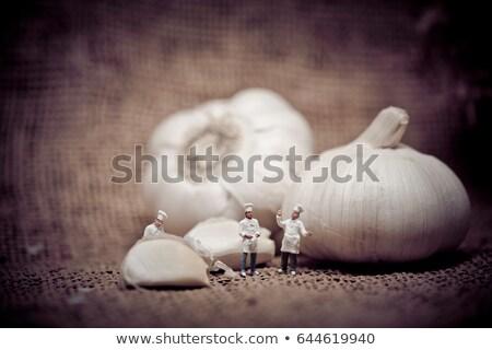 sarımsak · yeni · hasat - stok fotoğraf © kirill_m