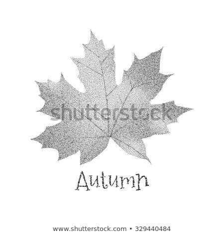 Juharlevél ősz ősz illusztráció absztrakt terv Stock fotó © gladiolus