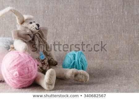 домашний · кукла · кролик · счастливым · ребенка - Сток-фото © AndreyCherkasov