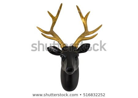 Ciervos cabeza madera aislado blanco Foto stock © -Baks-