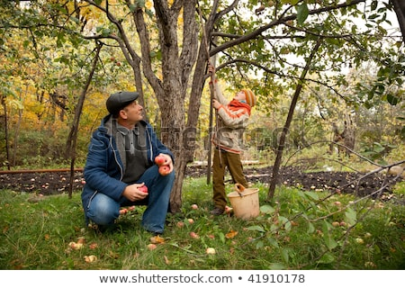 Grandson and grandfather neat the apple tree in autumnal garden Stock photo © Paha_L