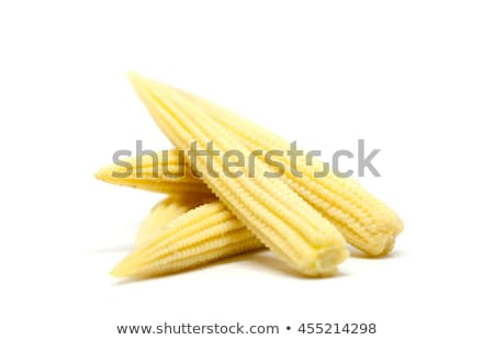 yellow young corn isolated on white stock photo © vapi