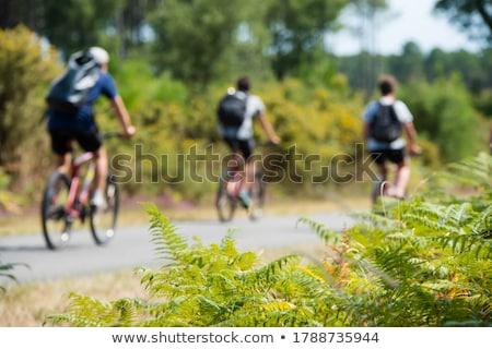 ciclo · seguir · cidade · estrada · esportes · fitness - foto stock © csakisti