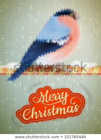 Christmas label on a knitted Bullfinch. EPS 10 Stock photo © beholdereye