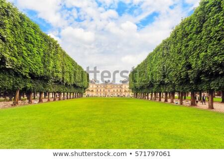 Luxemburg tuin vijver groot boten Parijs Stockfoto © neirfy