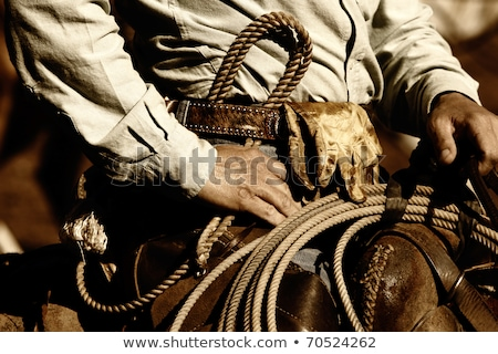 Pracy cowboy obraz autentyczny jazda konna Zdjęcia stock © lincolnrogers
