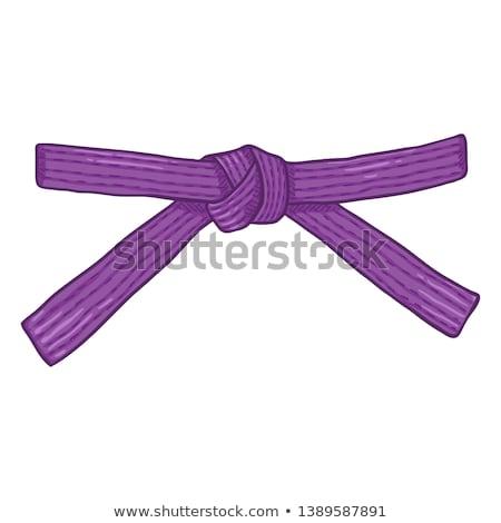 Taekwondo icon on purple background Stock photo © bluering