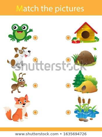 Dopasowywanie gry szablon zwierząt ilustracja szkoły Zdjęcia stock © bluering