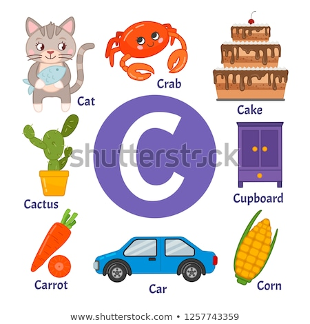 A letter C for cactus Stock photo © bluering