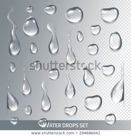 Water drop set on gray background Stock photo © bluering