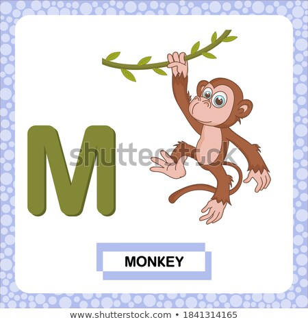 Flashcard alphabet M is for mammals Stock photo © bluering
