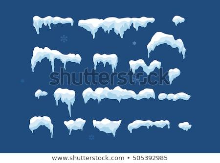 Gyűjtemény vektor hópelyhek kék szett díszes Stock fotó © mcherevan