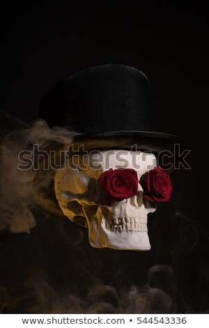 Spooky skull in tophat with red roses  Stock photo © Elisanth