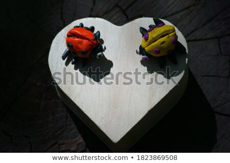 Coeur forme coccinelle vecteur insecte bug Photo stock © robisklp