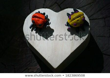 cuore · forma · coccinella · vettore · insetto · bug - foto d'archivio © robisklp