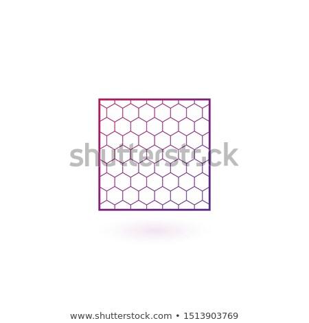 Absztrakt gömb nano net logo izolált Stock fotó © tussik