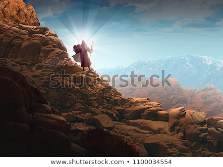 Stockfoto: Tien · illustratie · natuur · palmboom · dier · kameel