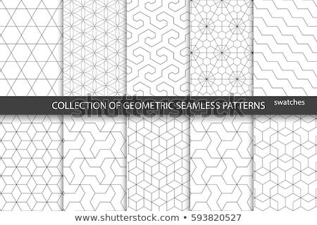 Geometryczny wzór kolekcja wektora tekstury tle biały Zdjęcia stock © SArts