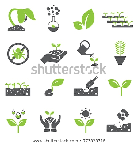 zonnebloem · plant · vector · icon · stijl - stockfoto © ahasoft