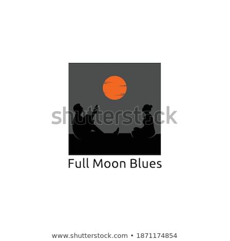 Guitare île clair de lune arbres forme Photo stock © psychoshadow