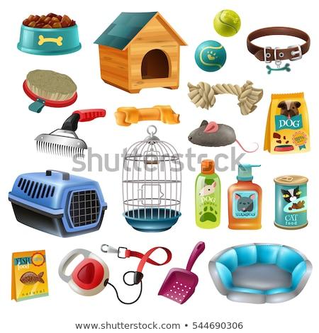 Dog care concept design, pet shop, dog shop, vector illustration. Stock photo © ikopylov