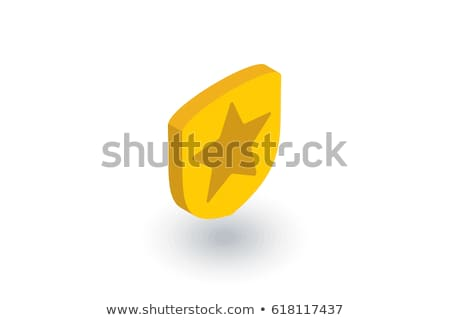 Shield isometric icon, isolated on color background Stock photo © sidmay
